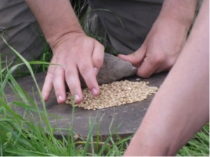 Grinding barley action shot